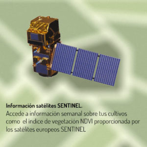 Información Satélite SENTINEL